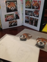 Red Panda Makeup Design Research